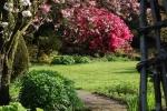 The Marks garden